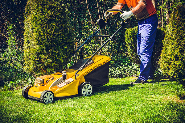 lawn mowing services tampa